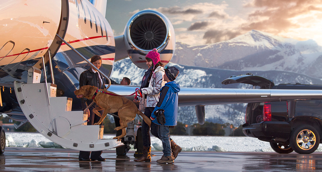 Private Plane Charter For Pets 2017  Ototrends