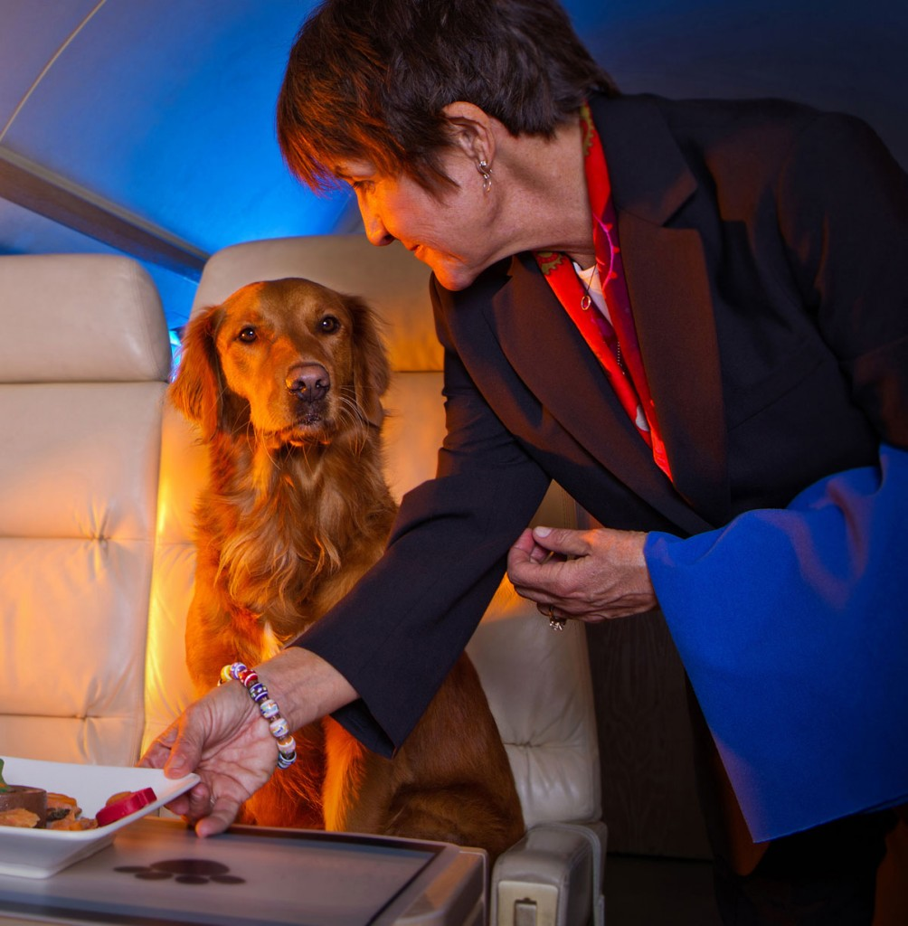 jet set pet service
